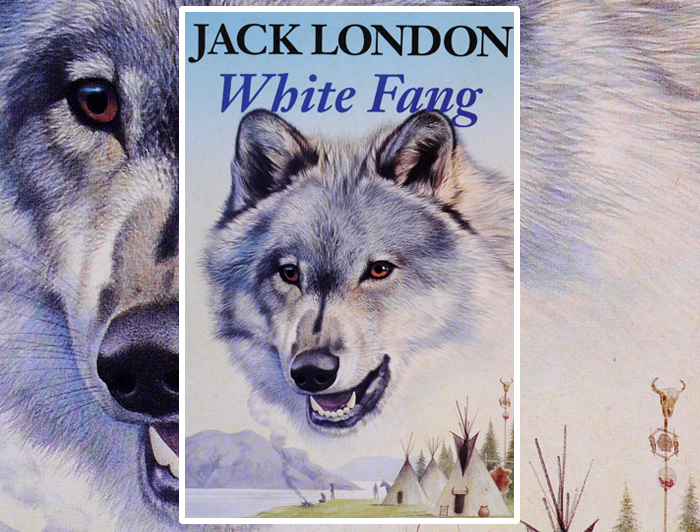 analysis of white fang Home → sparknotes → literature study guides → white fang white fang jack london table of contents short summary summary & analysis part one, chapters 1 and.