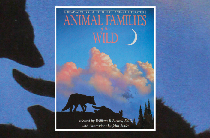 Animal Families of the Wild