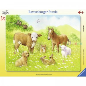 Ravensburger-farm3